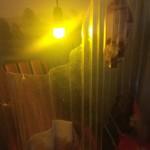 Schöne Lichtstimmung durch farbige Well-Plaste (?). Durch die Aussparungen blickt man in einen typischen Schrebergarten.