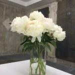 Frische Blumen begrüßen die Gäste, die auf ihre Führung warten.